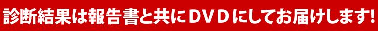 診断結果は報告書と共にDVDにしてお届けします!